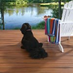 Armadillo Heritage composite decking Painted Desert
