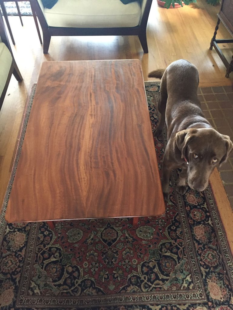 sapele coffee table